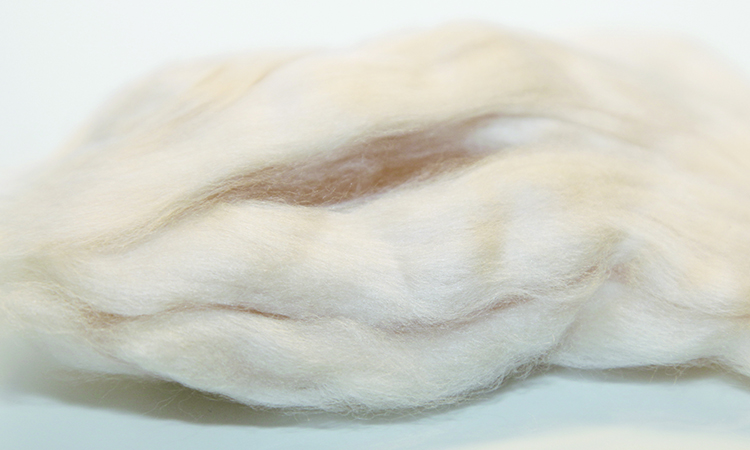 ftc-cashmere_about_cashmere_manufacturing_cashmerefibre_sustainability
